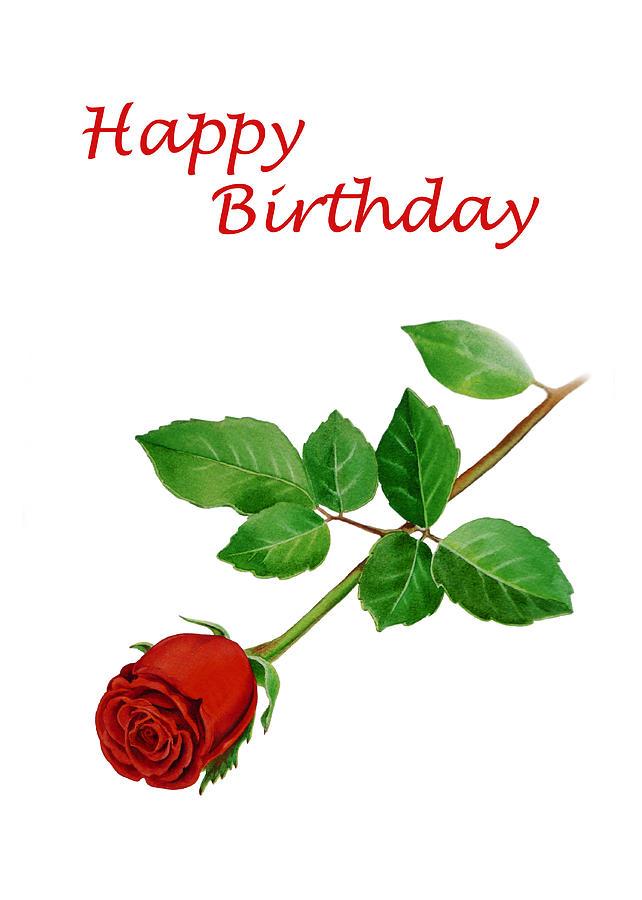 Rose Painting - Red Rose Happy Birthday by Irina Sztukowski