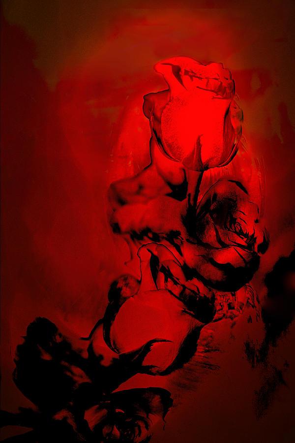 Red Roses Digital Art