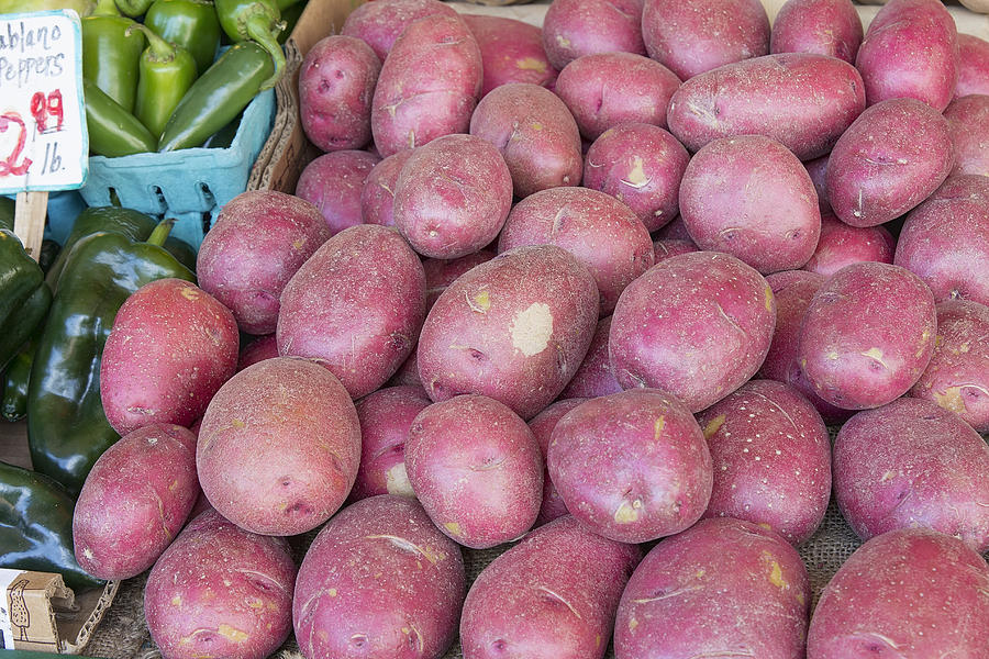 Red Photograph - Red Skin Potatoes Stall Display by JPLDesigns