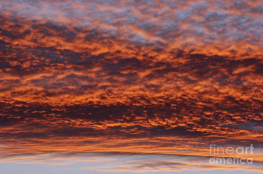 Rosy-sky Photograph - Red Sky by Michal Boubin