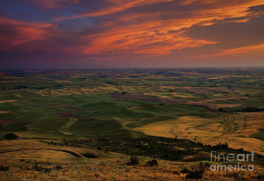 Red Sky Over The Palouse Photograph  - Red Sky Over The Palouse Fine Art Print