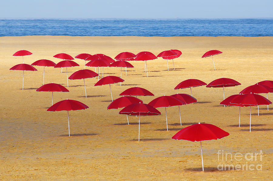 Red Umbrellas Photograph