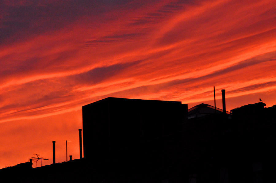 Red Photograph - Red Urban Sky by Diane Lent