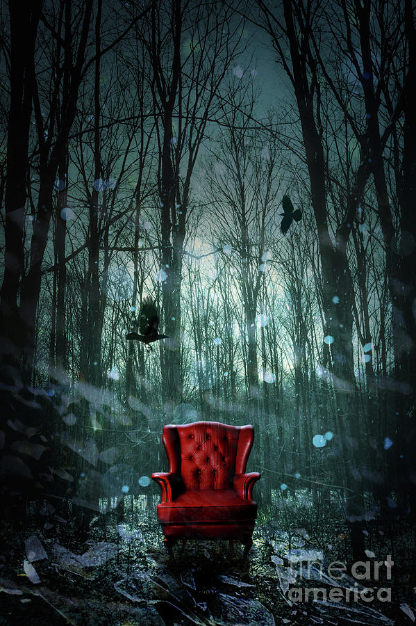 Red Wing Chair In Forest At Twilight Photograph  - Red Wing Chair In Forest At Twilight Fine Art Print