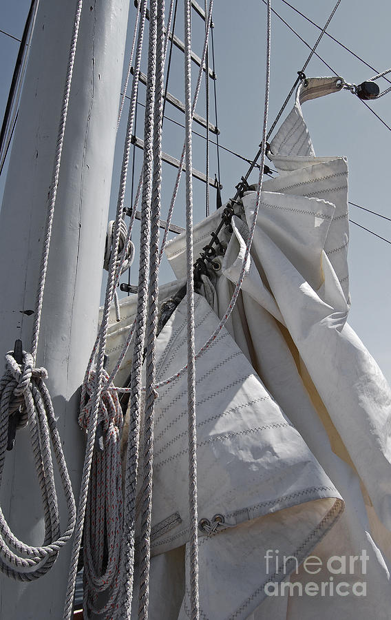 Reefing The Mainsail Photograph