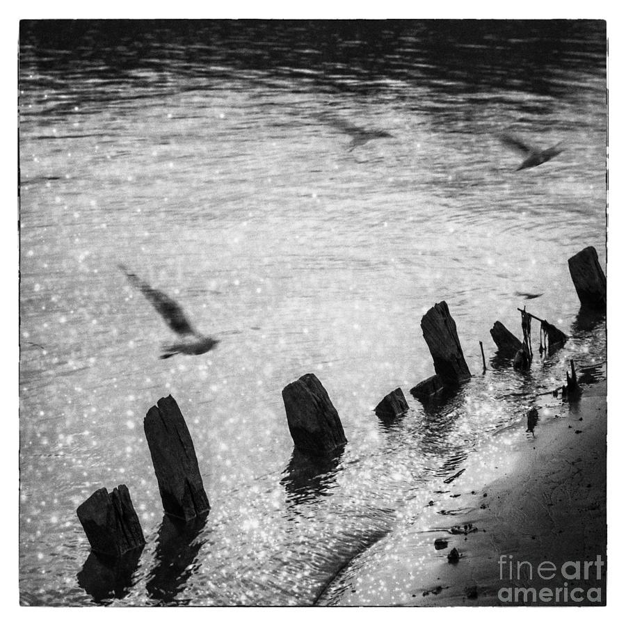 Reflection In Mae Khong River Photograph