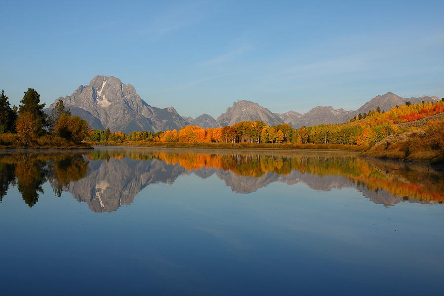 Reflection Of Mount Moran In Autumn Photograph