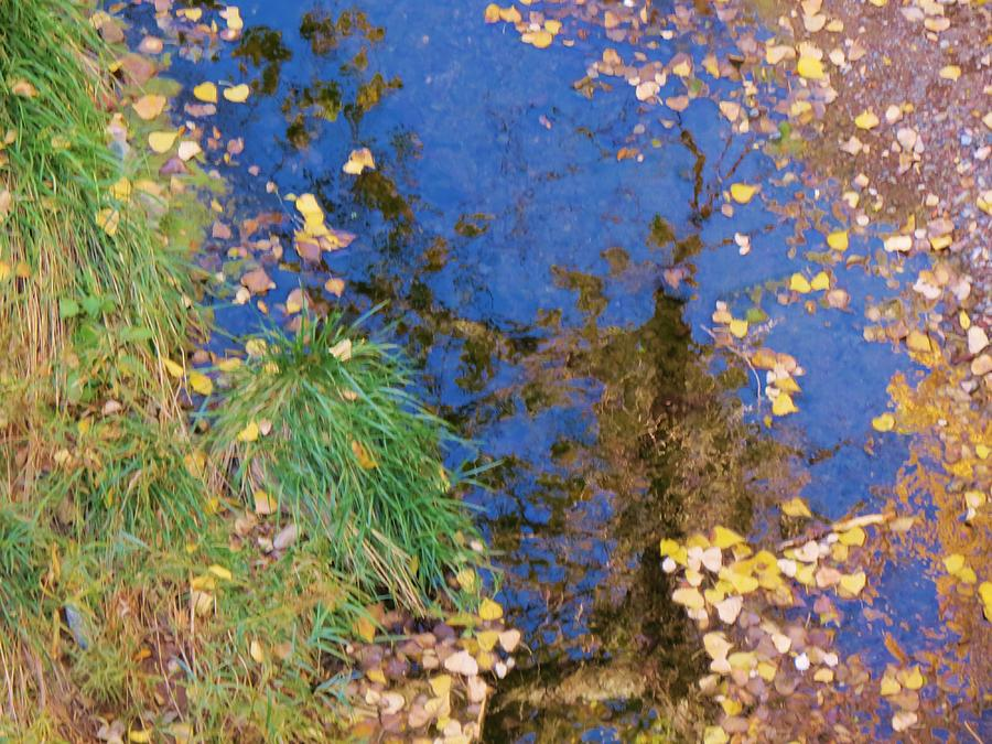 Reflections Of Fall Photograph  - Reflections Of Fall Fine Art Print