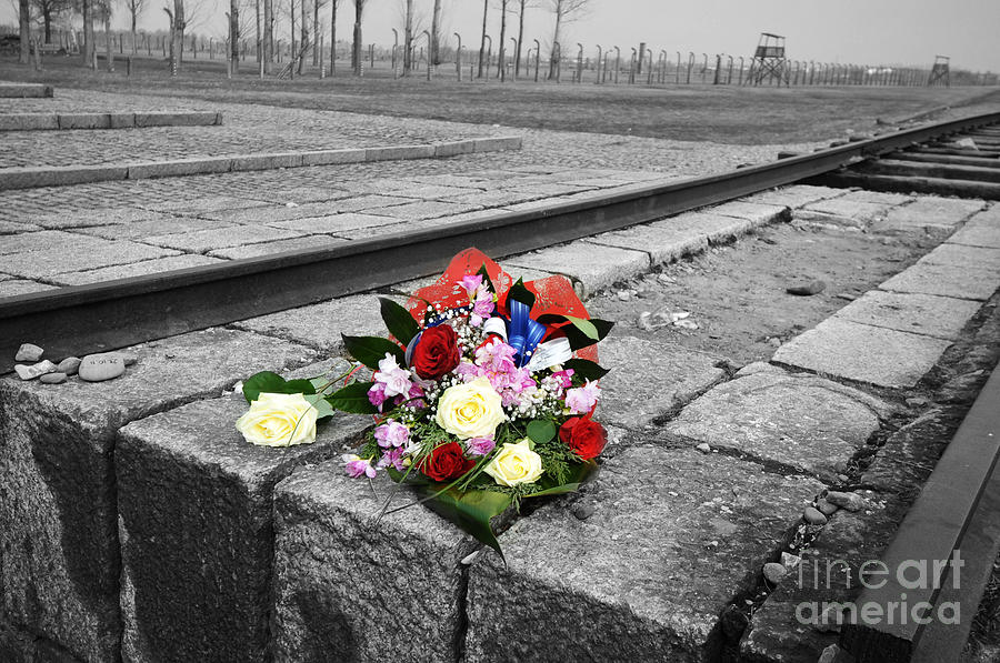 Auschwitz Photograph - Remembering The Painful Past by Randi Grace Nilsberg