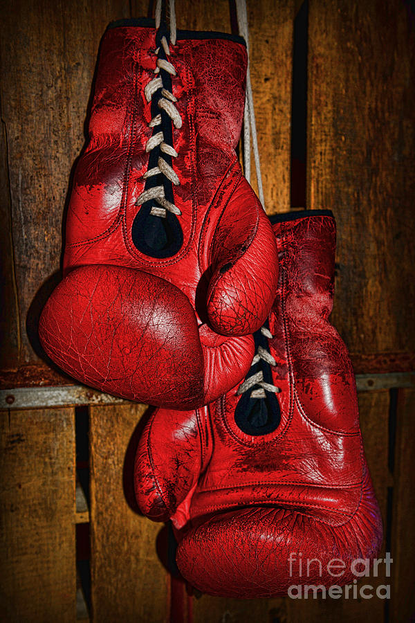 Paul Ward Photograph - Retired Boxing Gloves by Paul Ward