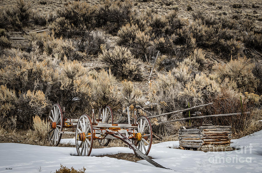 Retired Wagon Photograph  - Retired Wagon Fine Art Print