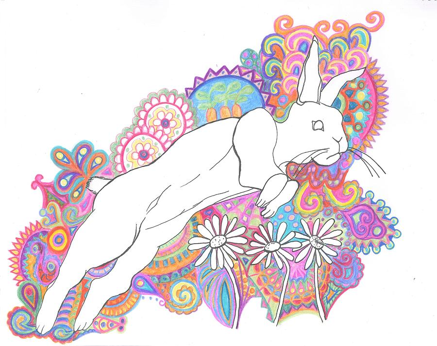 Jumping Rabbit Drawing - Retro Rabbit 2 by Cherie Sexsmith