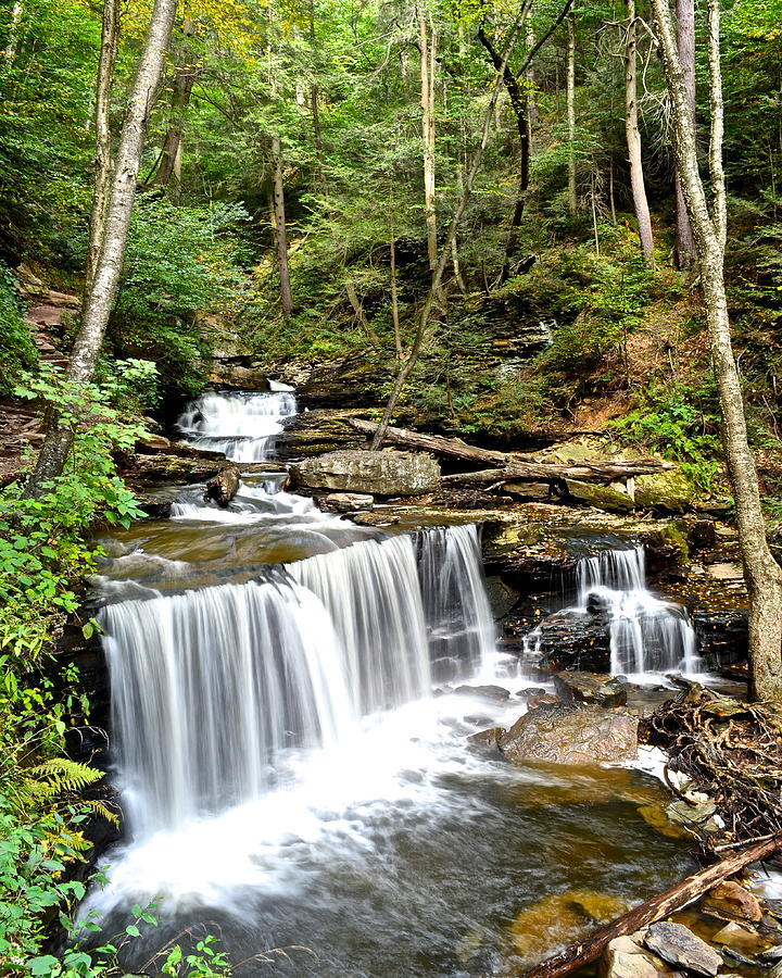 Ricketts Glen Delaware Falls Photograph