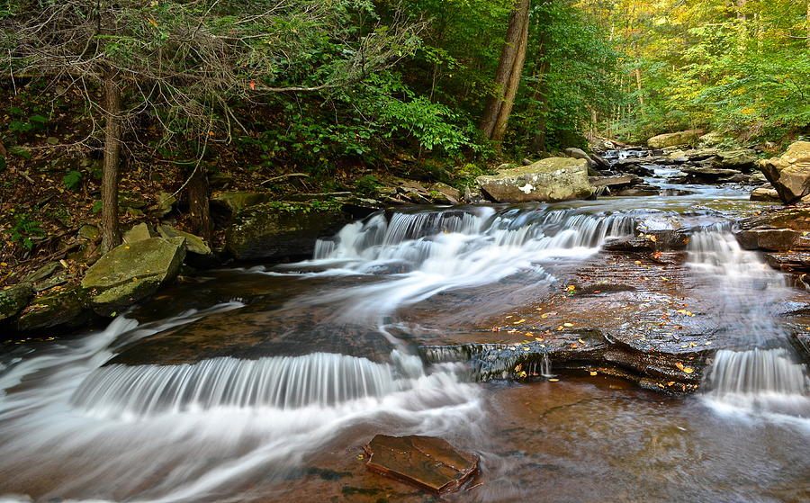 Ricketts Glen Photograph