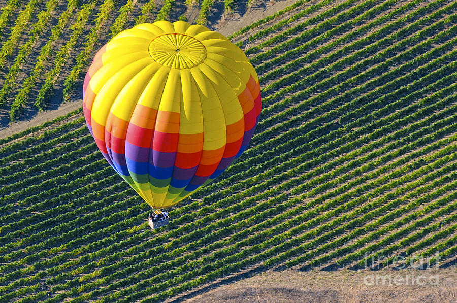 ... Hot Air Balloon Ride Balloons Landscape Landscapes Photographs