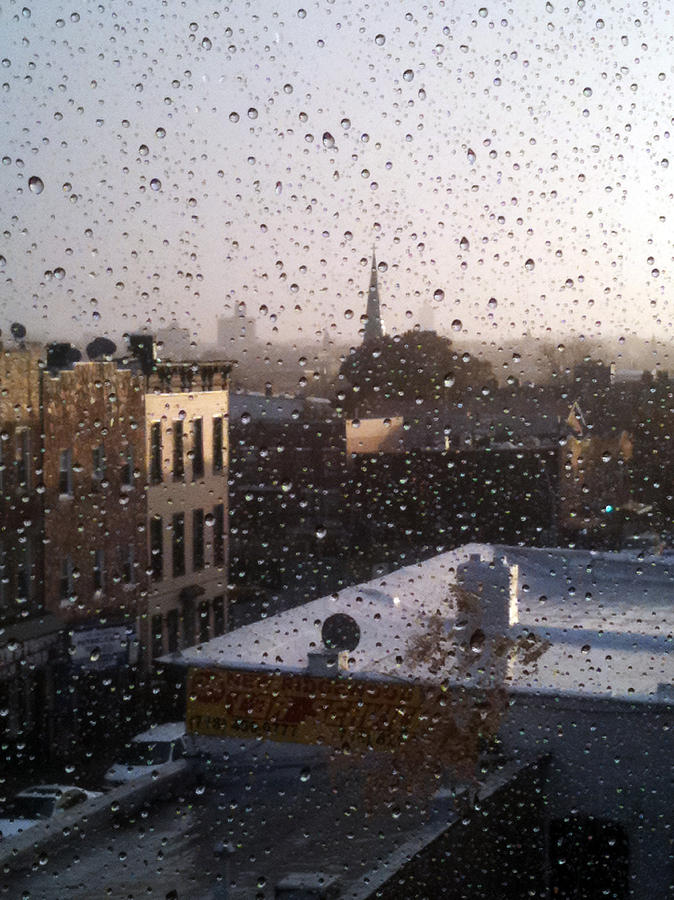 Ridgewood Wet With Rain Photograph
