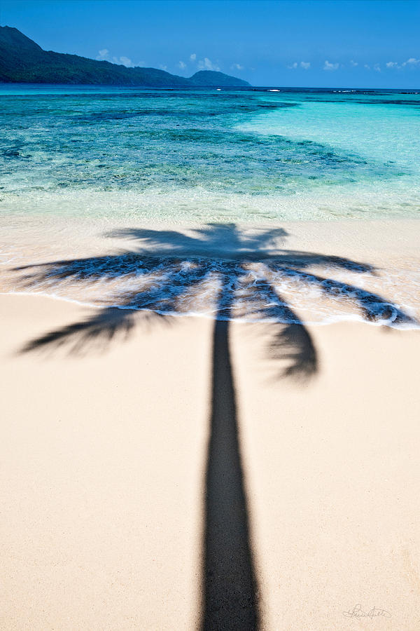Rincon Shadow Photograph