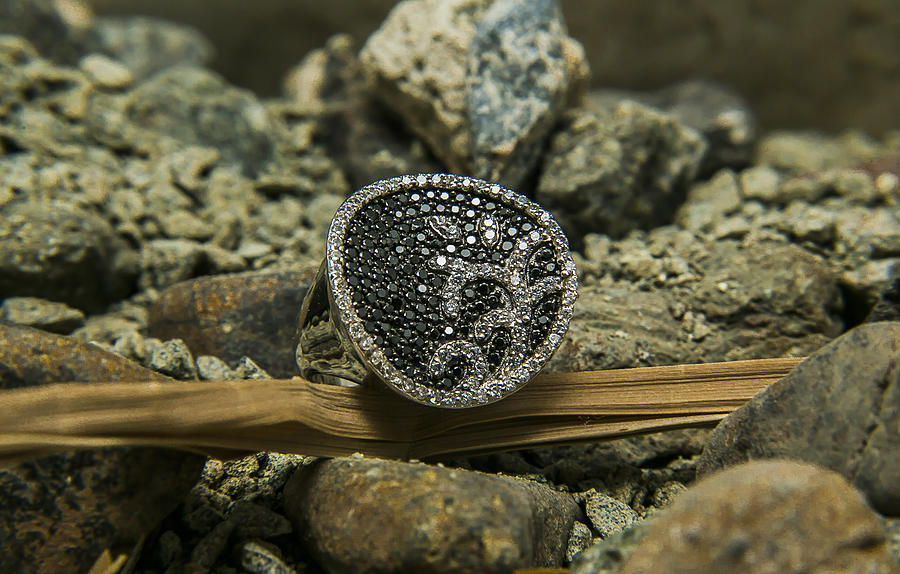 Ring Photography Jewelry