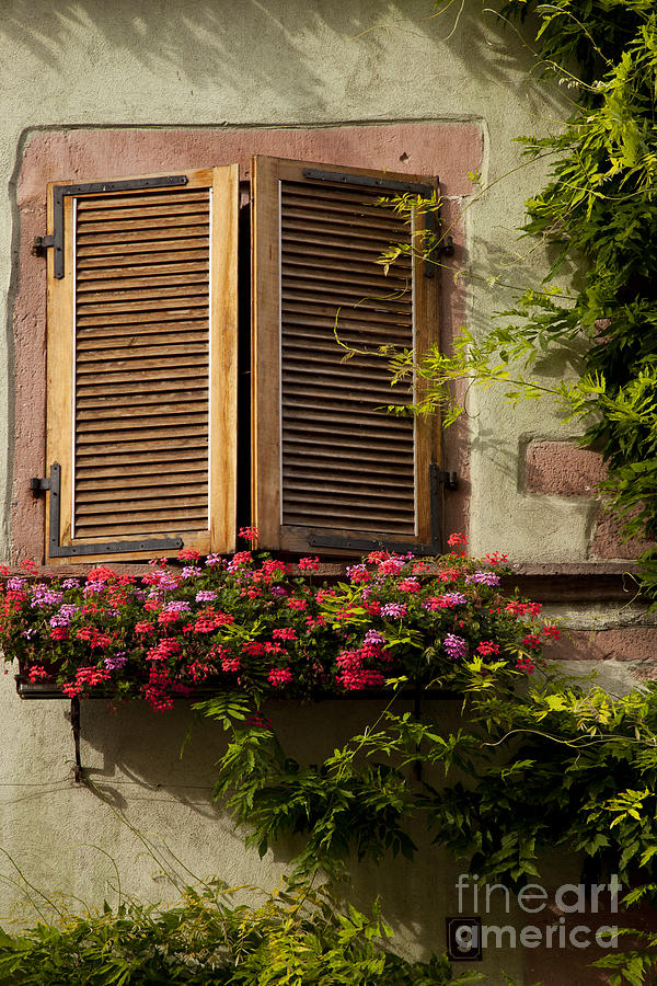 Riquewihr Window Photograph
