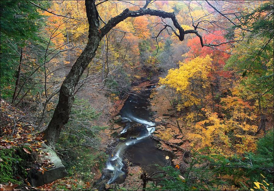 River Gorge Photograph