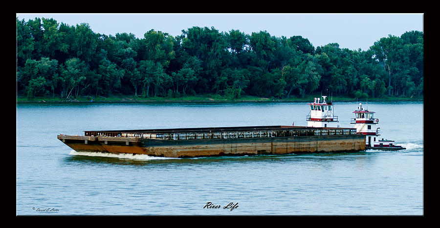 River Life Photograph