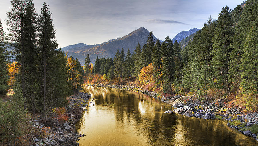 River Of Gold Photograph by Robert Bartow