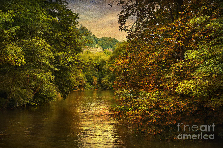 River Path Photograph  - River Path Fine Art Print