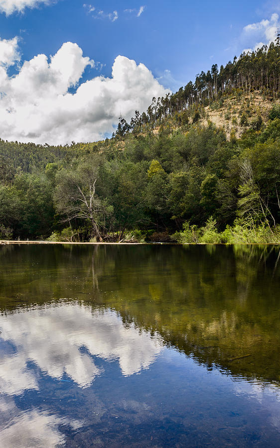 River Photograph - River Reflections I by Marco Oliveira
