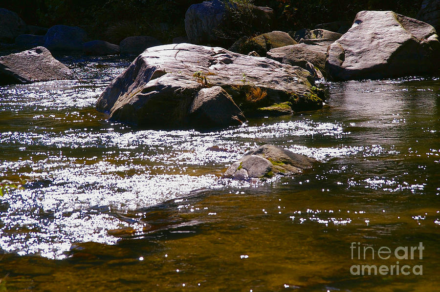 River Reflections Photograph  - River Reflections Fine Art Print