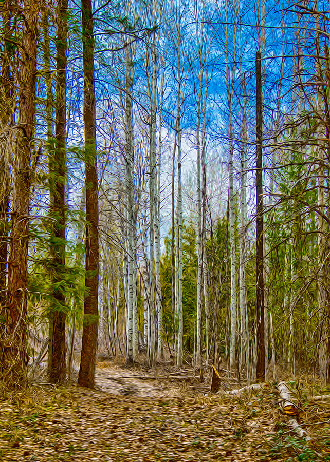 River Run Trail At Arrowleaf Painting  - River Run Trail At Arrowleaf Fine Art Print
