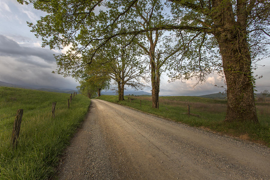 Horizontal Photograph - Road Not Traveled II by Jon Glaser