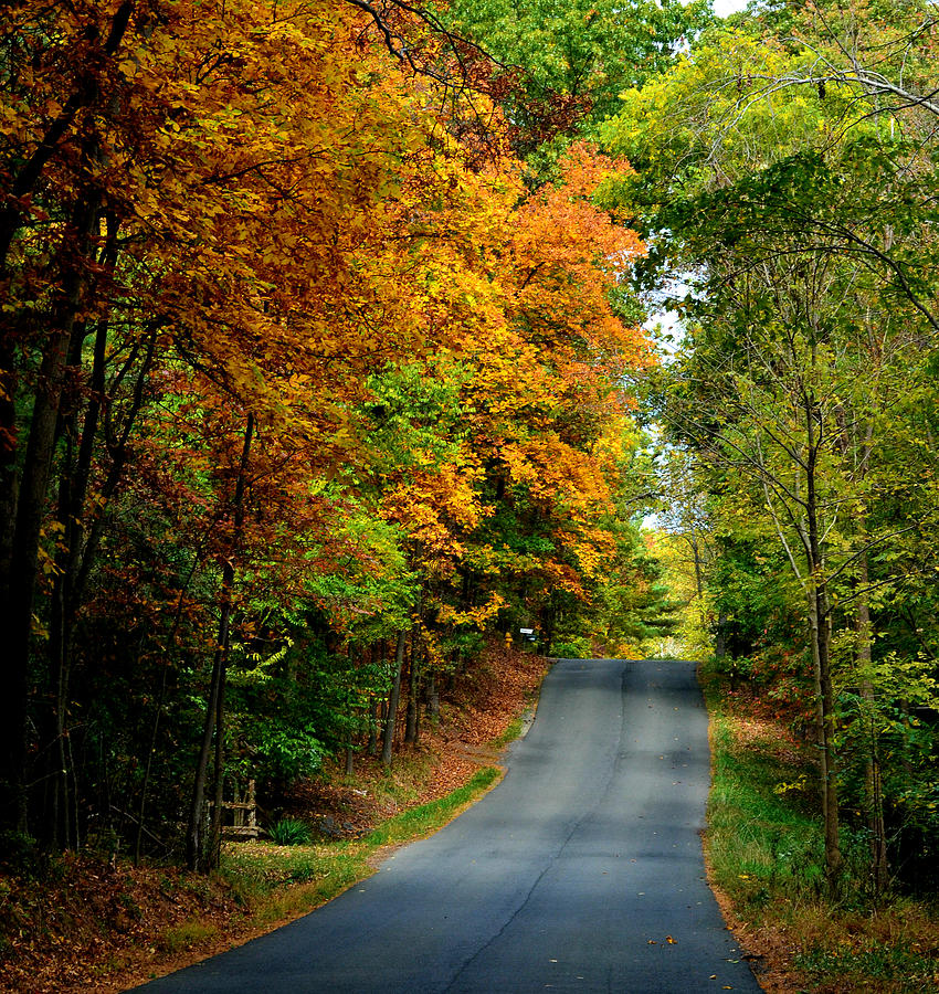 Road To Riches Photograph  - Road To Riches Fine Art Print
