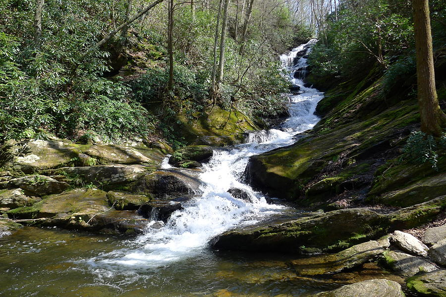 Roaring Fork Falls - Spring 2013 Photograph