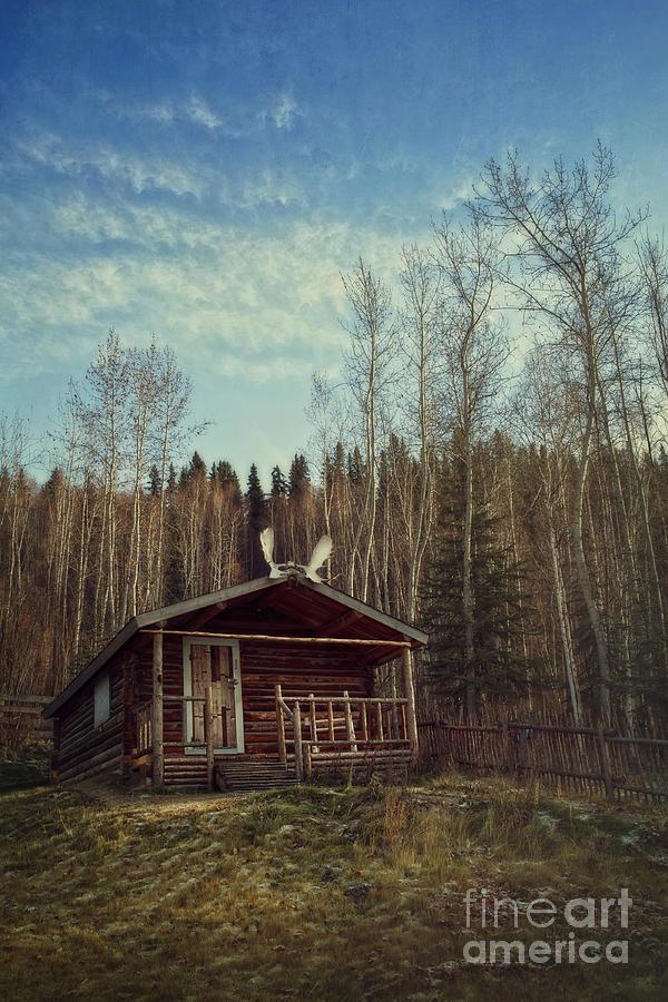 Robert Service Cabin Photograph