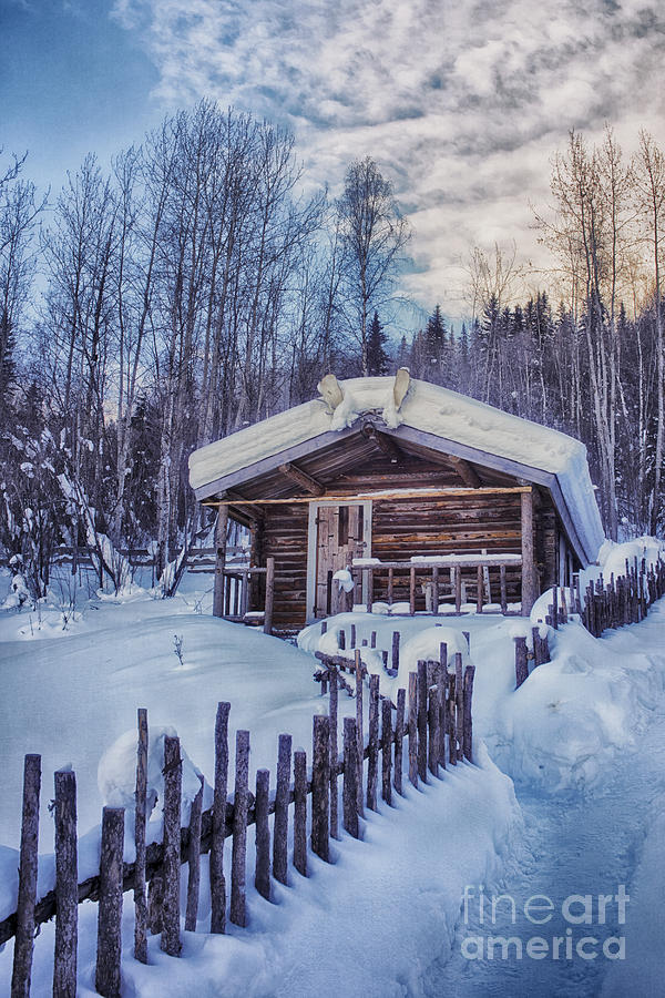 Robert Service Cabin Winter Idyll Photograph  - Robert Service Cabin Winter Idyll Fine Art Print