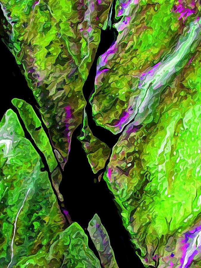 Nature Digital Art - Rock Art 17 In Green by Bill Caldwell -        ABeautifulSky Photography