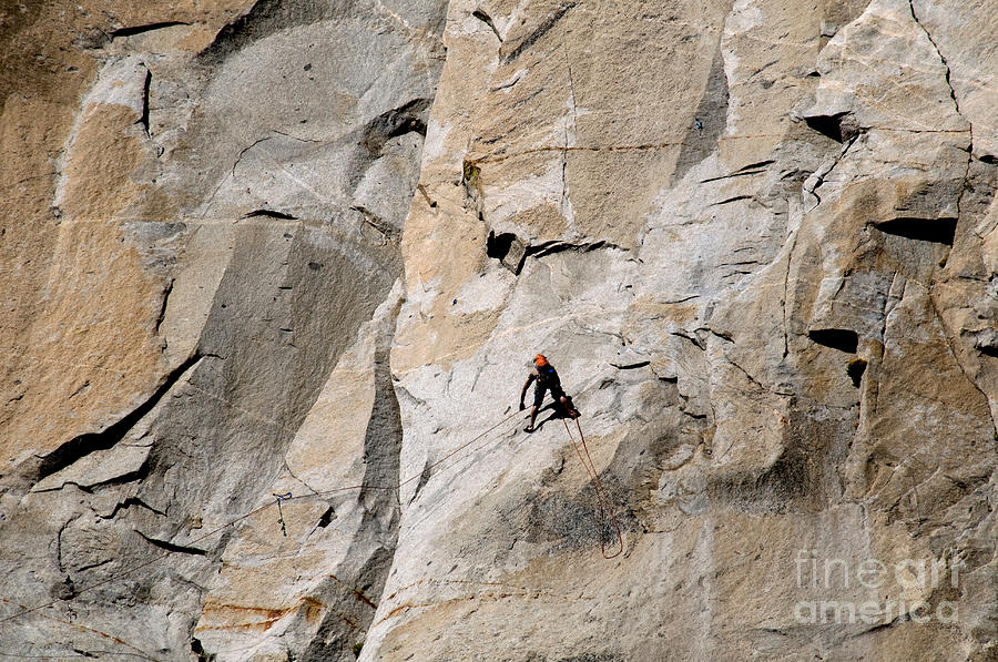 Yosemite Photograph - Rock Climber On El Capitan by Mark Newman