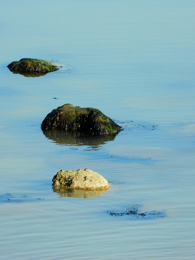 Rock Pool Photograph