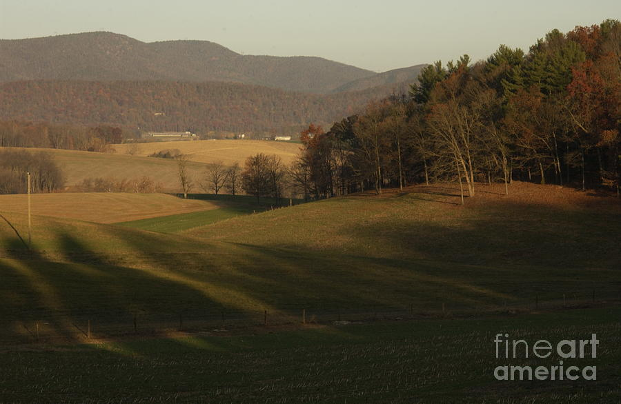 Rockingham County Virginia Meadow Photograph