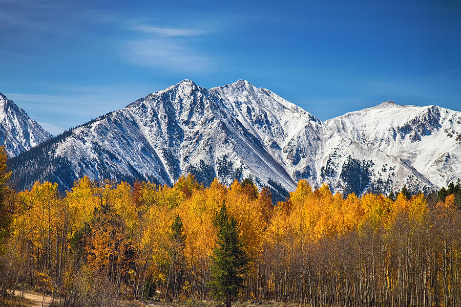 Rocky Mountain Autumn High Photograph