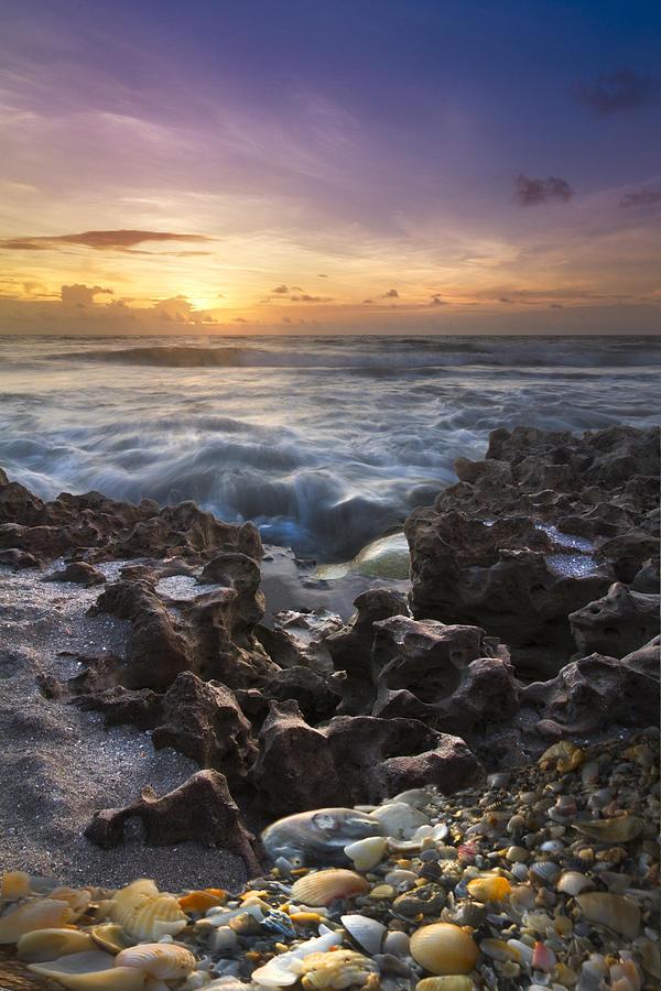 Rocky Shore Photograph