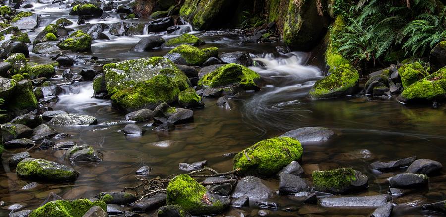 Stream Photograph - Rocky Stream 03 by Heather Provan