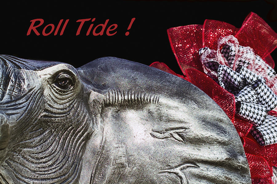 Roll Tide - 14 Time National Champions Photograph