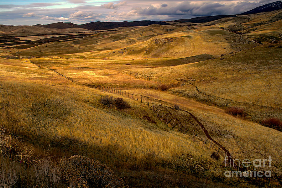 Landsacape Photograph - Rolling Hills by Robert Bales