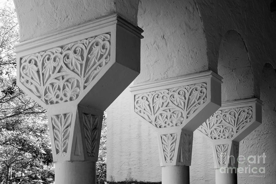 Rollins College Arcade Detail Photograph