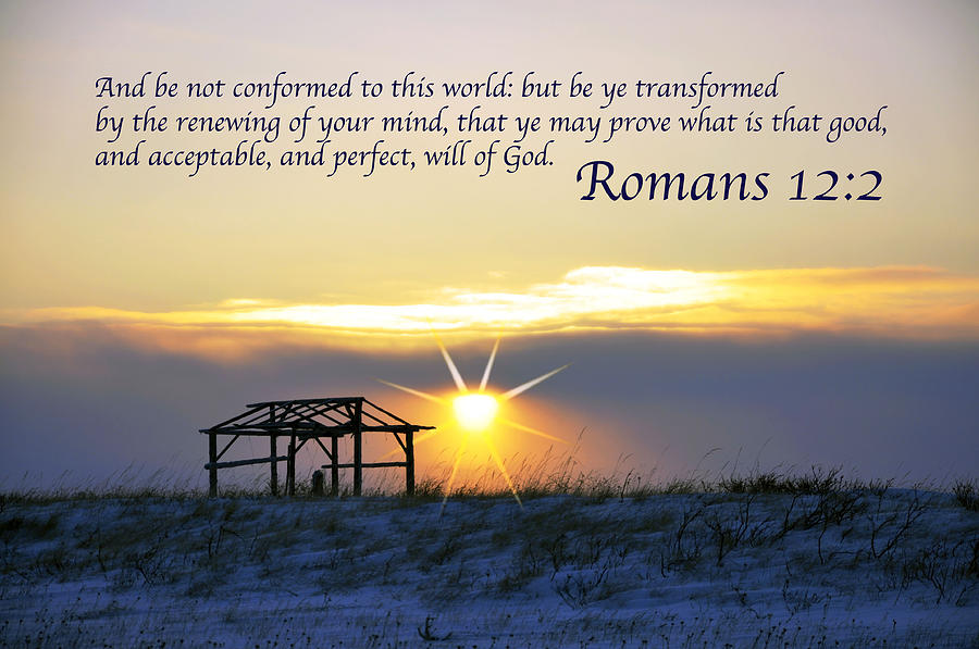 Romans Chapter 12 Verse2 Photograph  - Romans Chapter 12 Verse2 Fine Art Print
