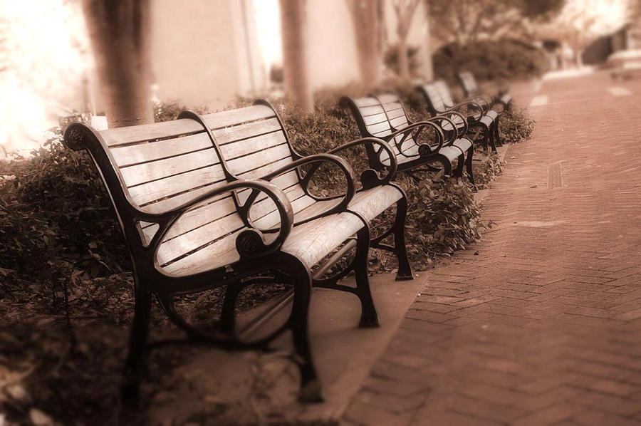 Romantic Surreal Park Bench Pink Sepia Tones Photograph