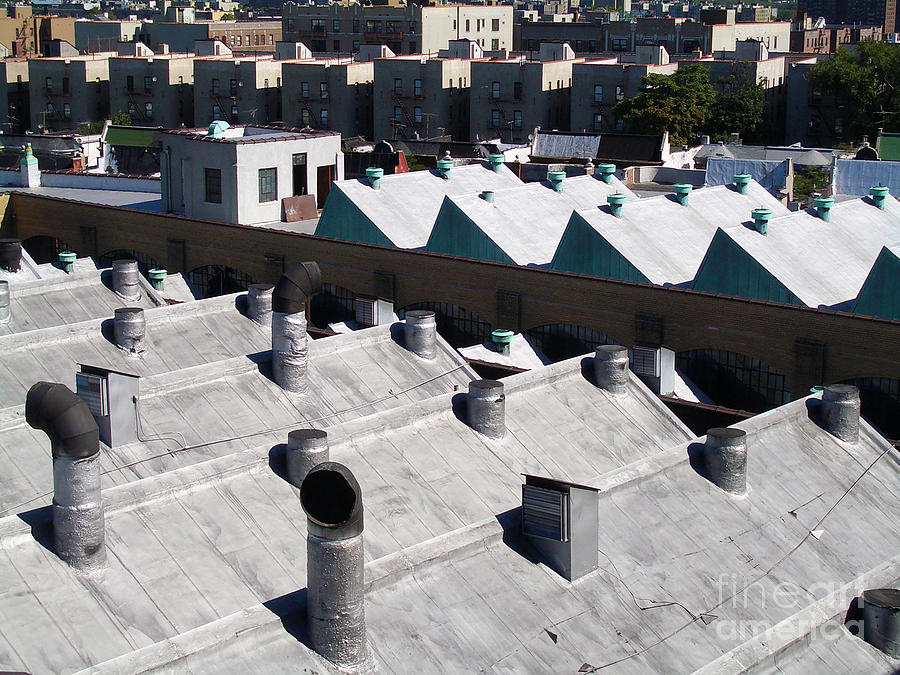 Rooftops Of South Bronx Photograph  - Rooftops Of South Bronx Fine Art Print