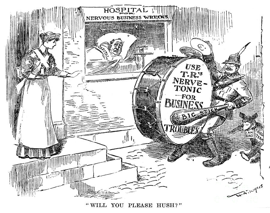 Roosevelt Cartoon, 1908 Photograph