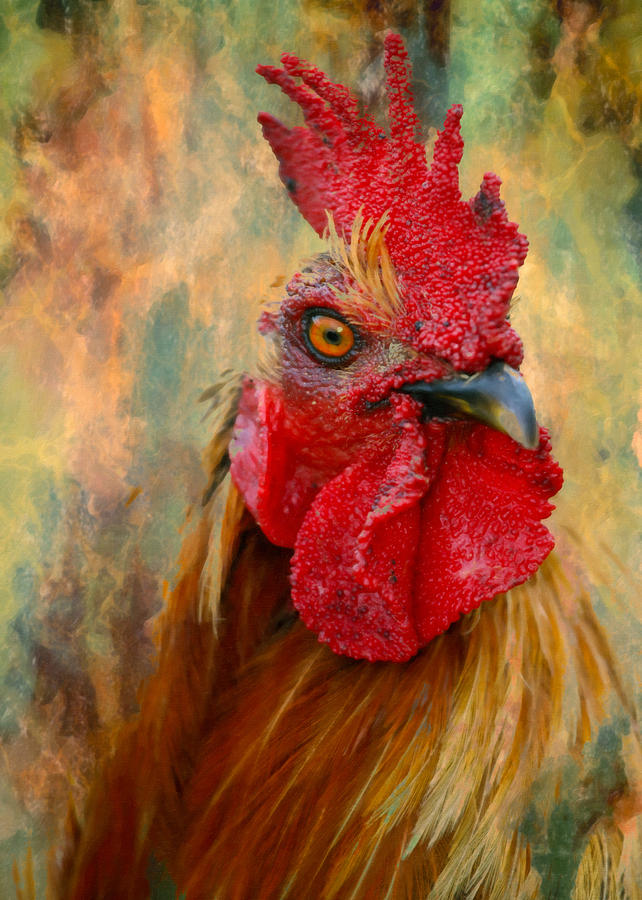 Rooster On The Loose - Abstract Realism Mixed Media